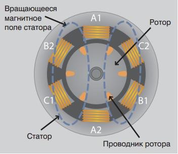 поляризация ротора