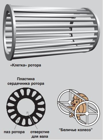 беличье колесо - короткозамкнутый ротор